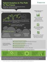 Hybrid Analytics Infographic