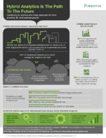 Hybrid Analytics Infographic